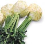 Семена овощей оптом,  весовые семена овощей