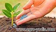 Средства защиты растений: гербициды,  фунгициды,  протравители,  инсектиц