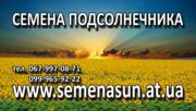 Семена подсолнечника, кукурузы, рапса  Украина Импорт