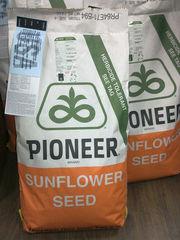 Продаём семена семечки кукурузы для посева